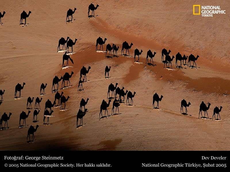 """National Geographics - Lest den ganzen Beitrag für """"das Besondere"""""""